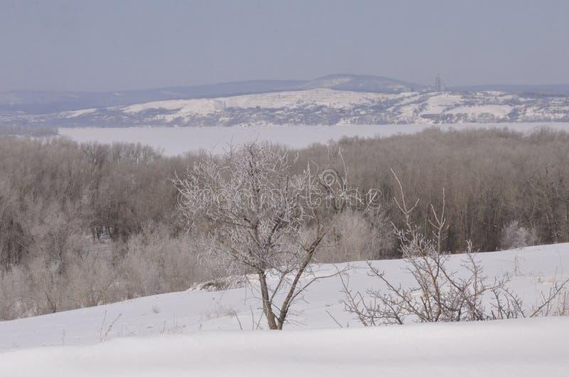 maszerujący Śnieg błyska obrazy stock