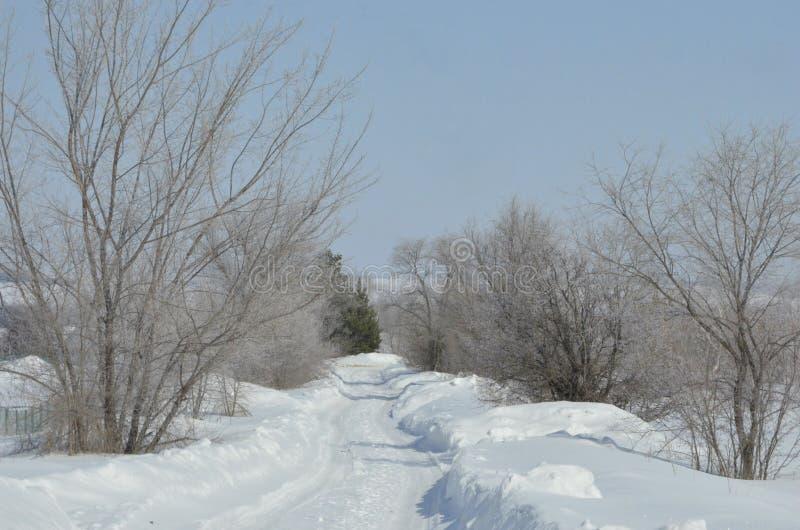 maszerujący Śnieg błyska Bank Volga obraz stock