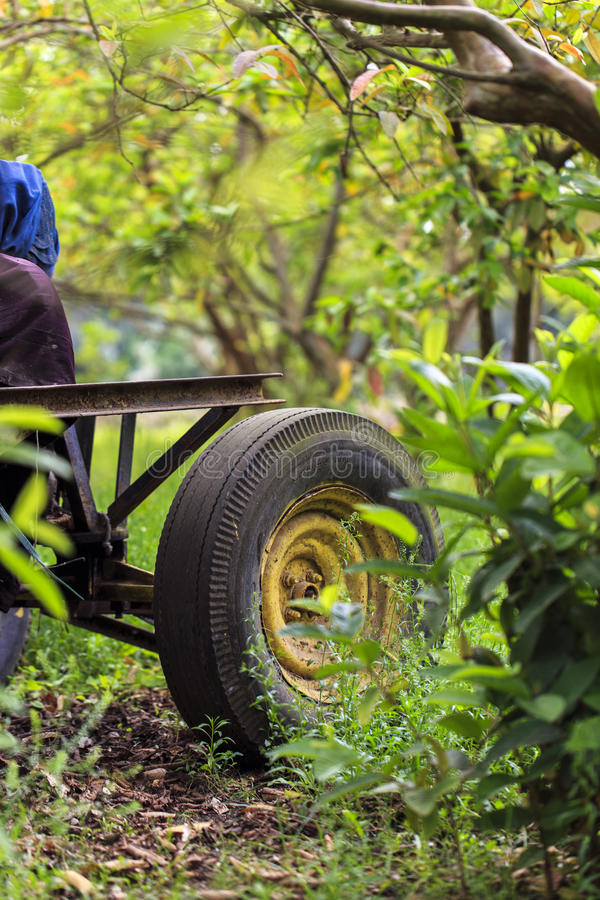 Maszynowa opona w wiosce, Damietta, Egipt zdjęcia stock