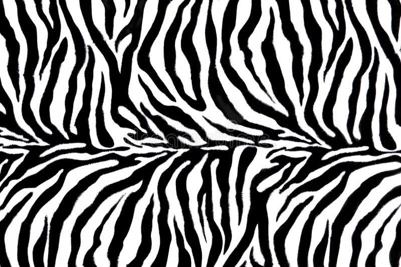 Matéria têxtil da zebra