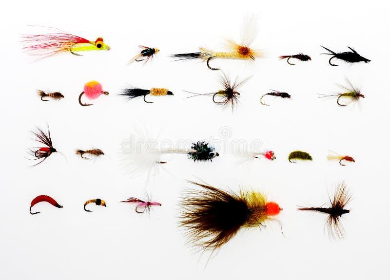 Matériel de pêche de mouche image stock