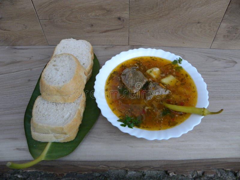 Mat Andsoppa fotografering för bildbyråer
