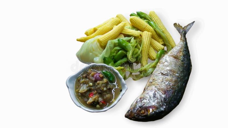 Mat buljong, fisk, makrill, soppa fotografering för bildbyråer