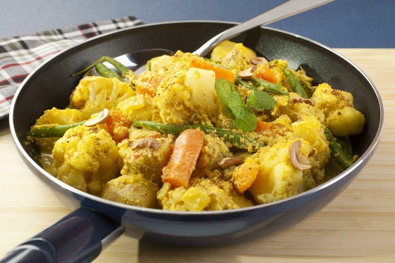 Mat för grönsakcurryindier royaltyfri bild