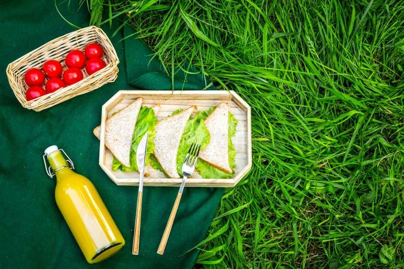 Mat för picknick på bordduk på grönt gräs Utomhus- begrepp för mål Smörgåsar grönsaker, utrymme för kopia för bästa sikt för drin arkivbilder
