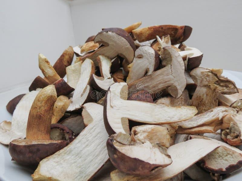 Mat för Porcini stensoppchampinjon royaltyfri foto