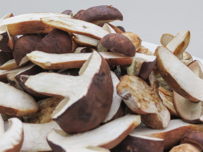 Mat för Porcini stensoppchampinjon arkivbilder