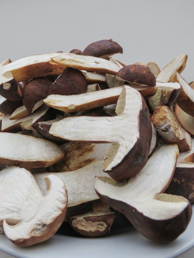 Mat för Porcini stensoppchampinjon royaltyfria bilder