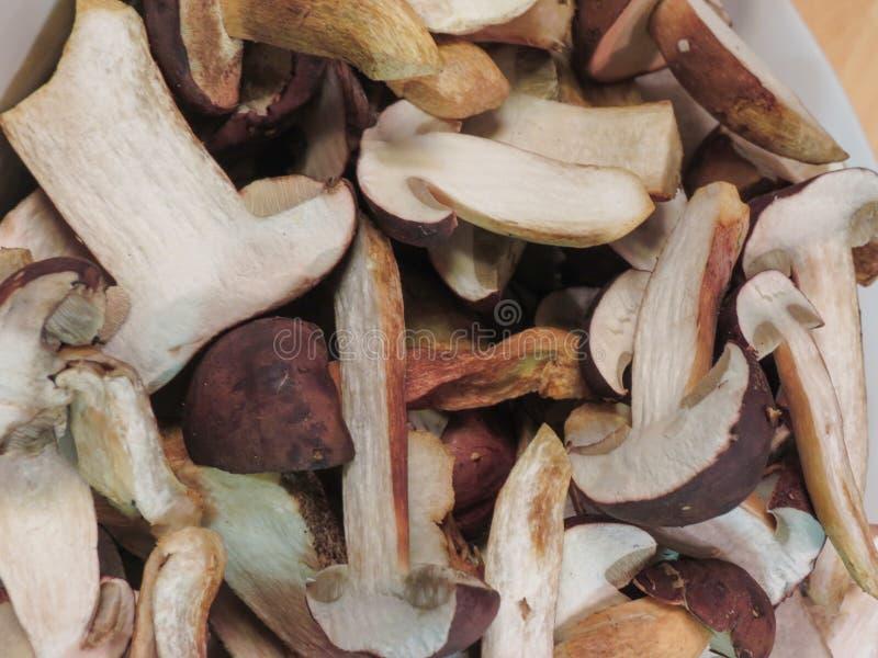 Mat för Porcini stensoppchampinjon arkivfoto