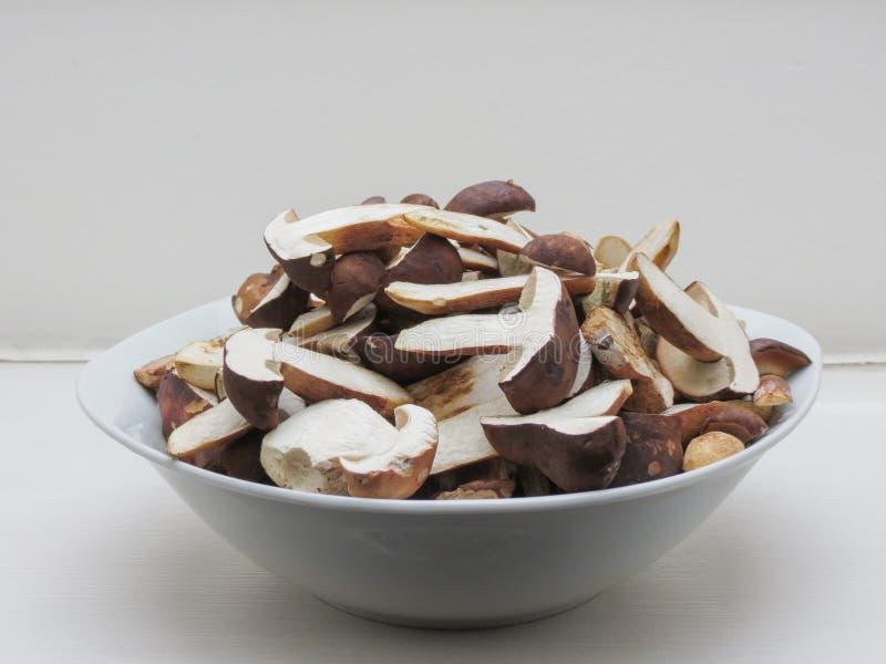 Mat för Porcini stensoppchampinjon arkivfoton
