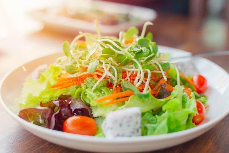 Mat för sallad för blandning för frukt för strikt vegetarianmålgrönsak ren sund royaltyfria foton