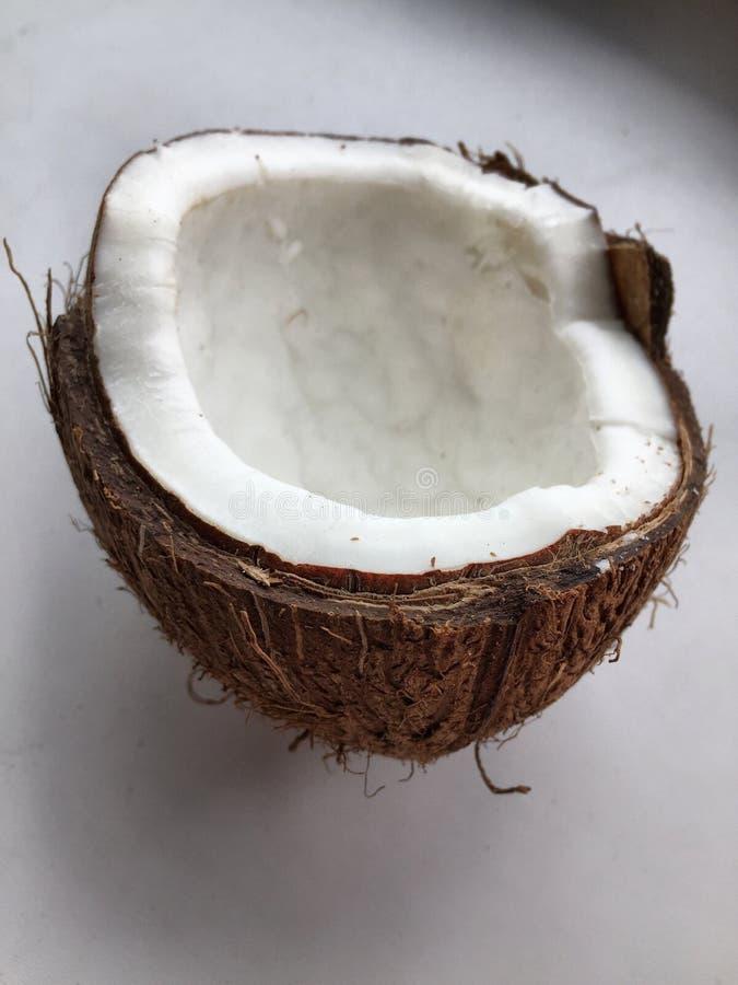 mat för skal för kokosnötmutter halv royaltyfria bilder