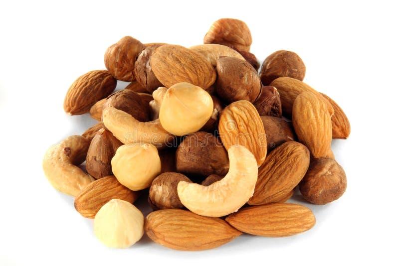 mat inramniner blandad nuts serie royaltyfri bild