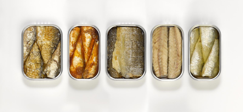 Mat - på burk fisk royaltyfria foton