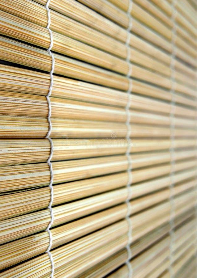 mata bambus obraz royalty free