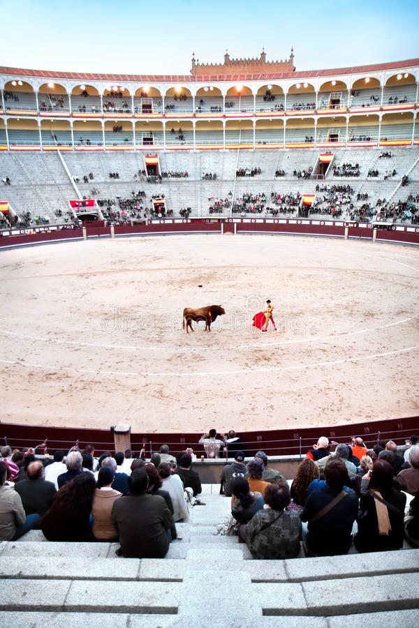 A matador is main performer in bullfighting. MADRID - OCTOBER 17: A matador in full dress is main performer in bullfighting. He performs with and kills the bull stock photo