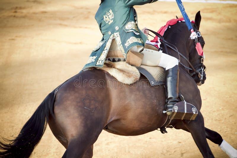 Matador und zu Pferde in der Stierkampfarena, Bullfighter lizenzfreie stockfotos