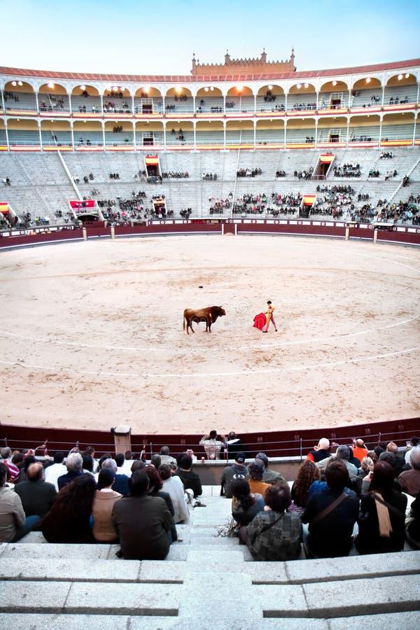 Matador w bullfighting głównym wykonawcą jest zdjęcie stock