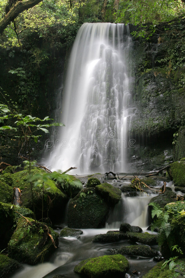 Free Matai Falls 11 Royalty Free Stock Photo - 7046795