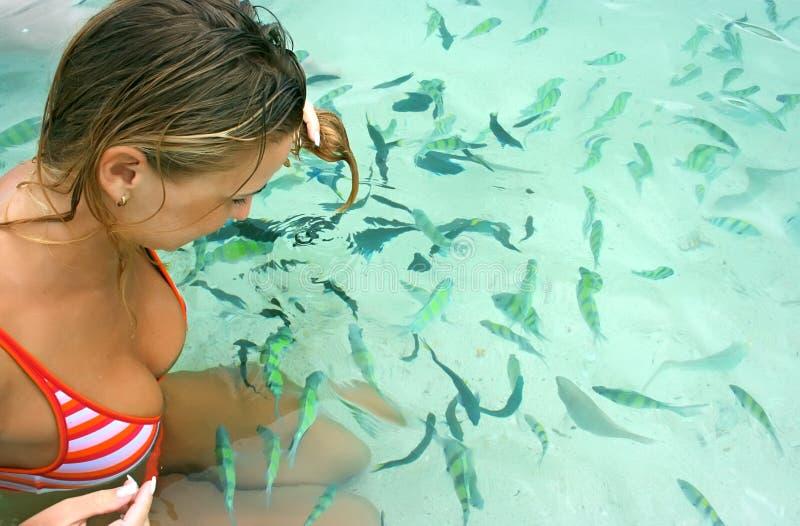 matande fisk royaltyfri bild
