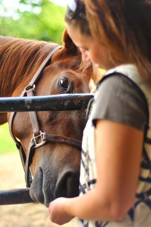 matande hästkvinnabarn royaltyfria bilder