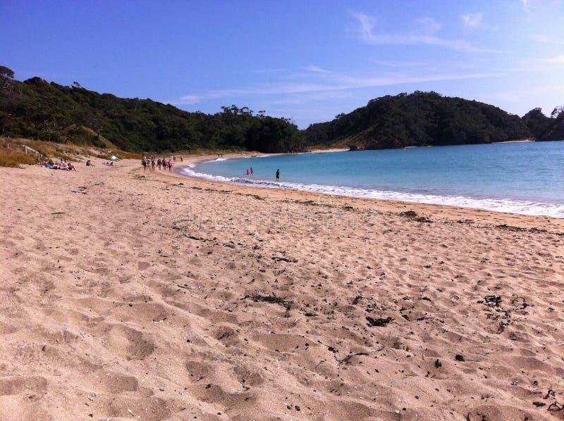 Matapouri-Strand stockfoto