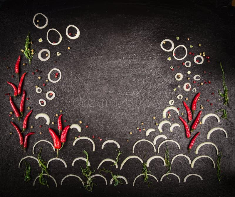 Matbakgrund med örter och kryddor, hav och korall som göras av löken, chili och alger på den mörka stentabellen arkivfoton