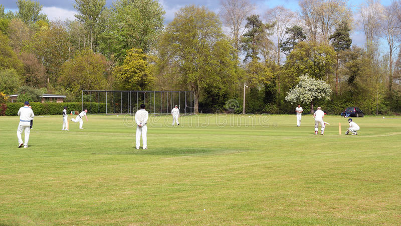 Match de cricket de village en Angleterre photo stock