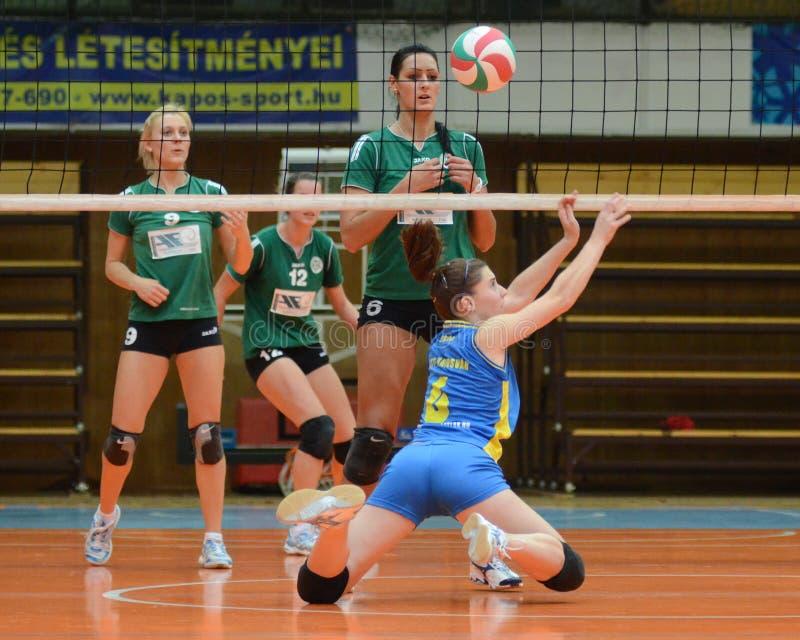 Match de volley de Kaposvar - de Miskolc images libres de droits