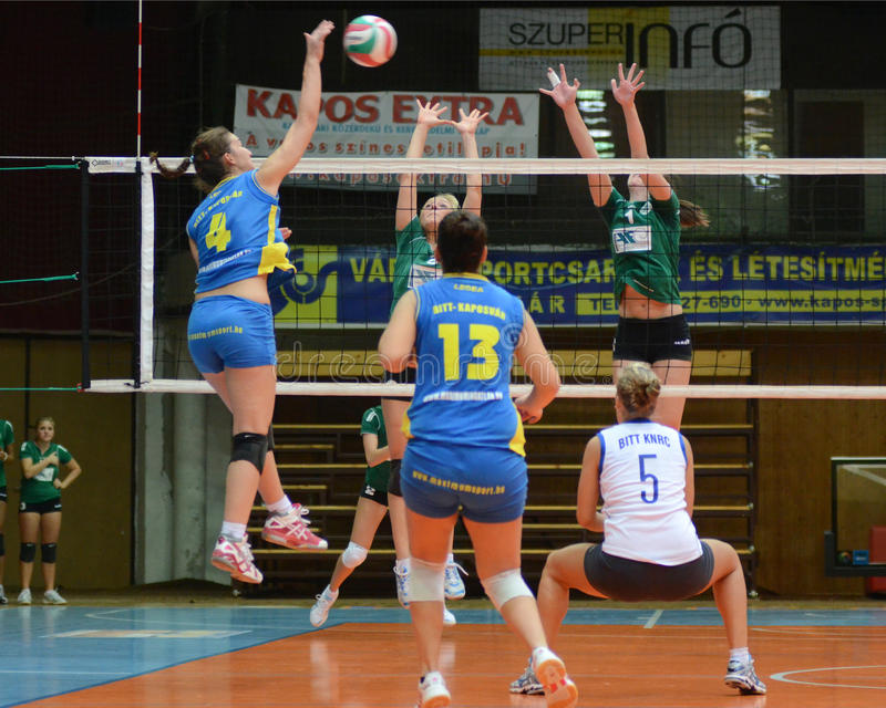 Match de volley de Kaposvar - de Miskolc image libre de droits