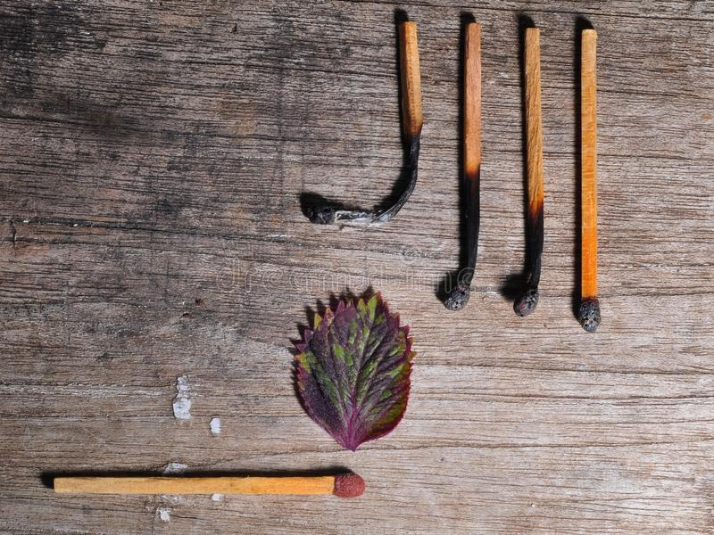Match with a strip leaf and Different stages of match burning stock photo