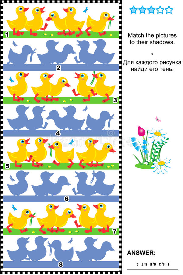 Match to shadow visual puzzle - ducklings. Visual puzzle or picture riddle: Match the pictures of little ducklings to their shadows. Answer included royalty free illustration