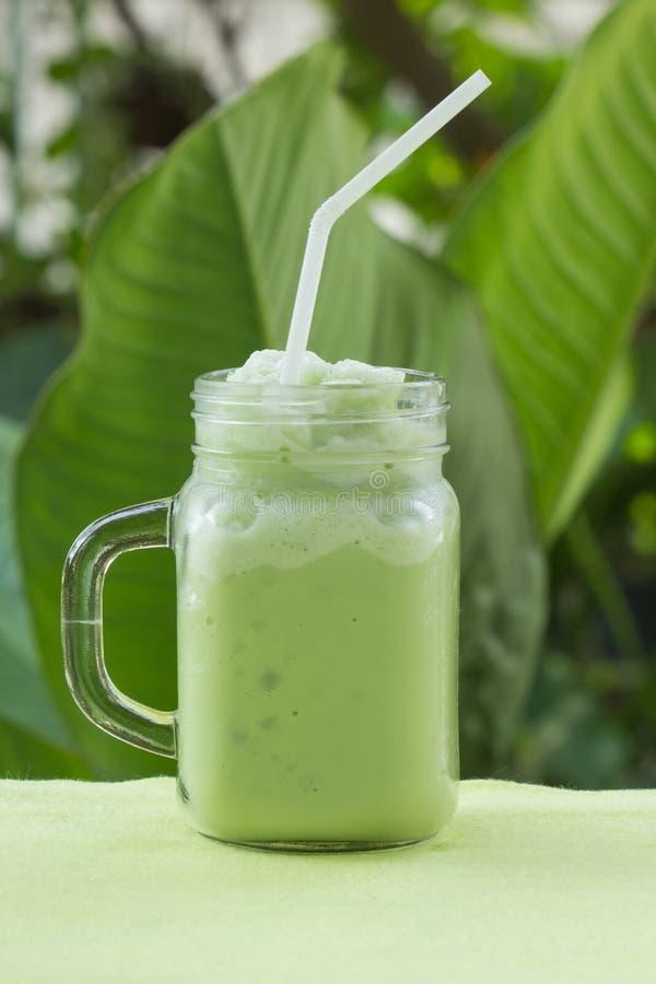 Matcha绿茶圆滑的人 库存图片