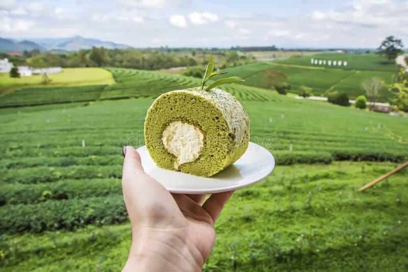 Matcha green tea roll cake royalty free stock image