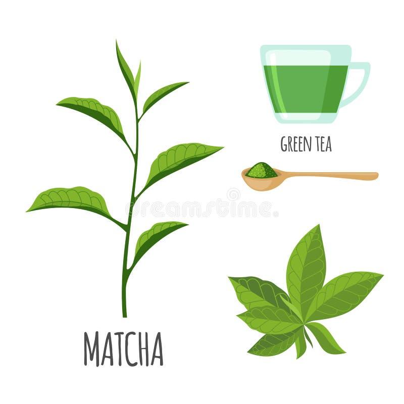 Matcha met kop thee in vlakke die stijl wordt op wit wordt geïsoleerd geplaatst dat stock illustratie