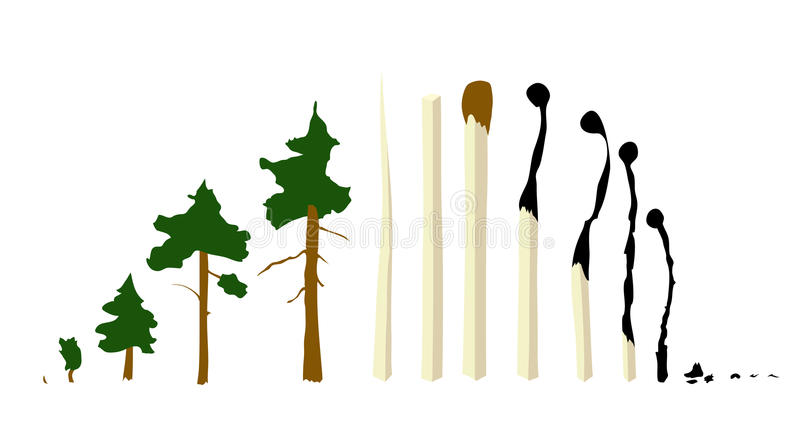 Matches and trees. Vector set stock illustration