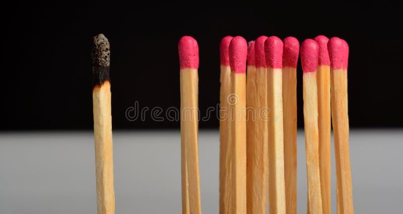 Matchstock lizenzfreie stockfotografie