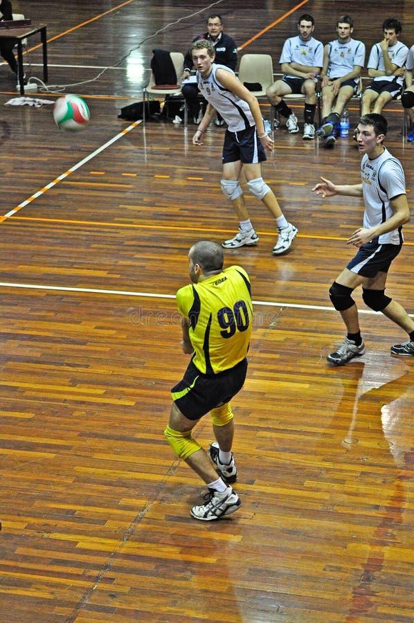 matchvolleyboll royaltyfri fotografi