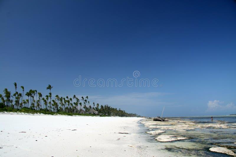 Matemwe strand, Zanzibar royaltyfri fotografi