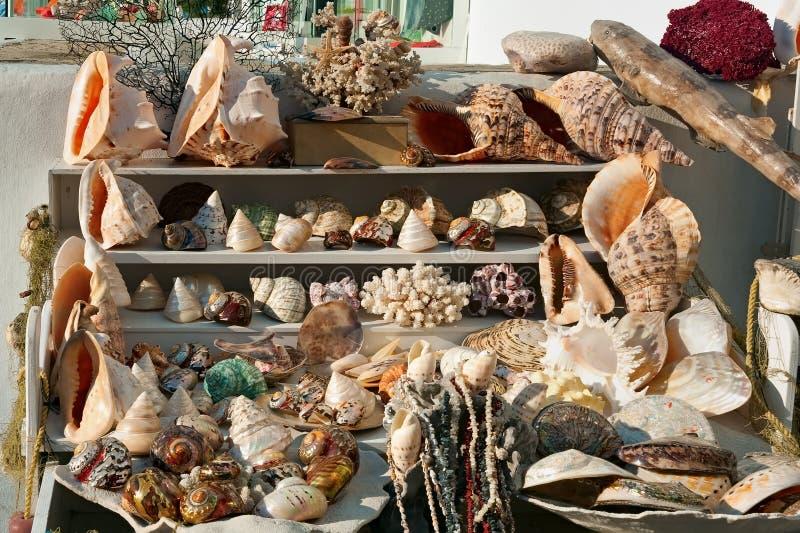 Materia marina en venta fotos de archivo libres de regalías