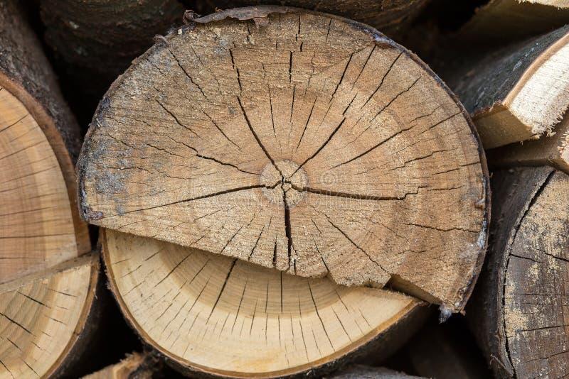 Material de construção de madeira da madeira para o fundo e a textura Fim acima abstraia o fundo Profundidade de campo pequena imagem de stock