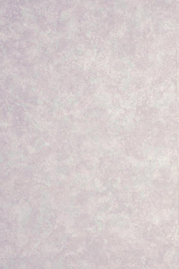 Material de Formicia imagem de stock royalty free