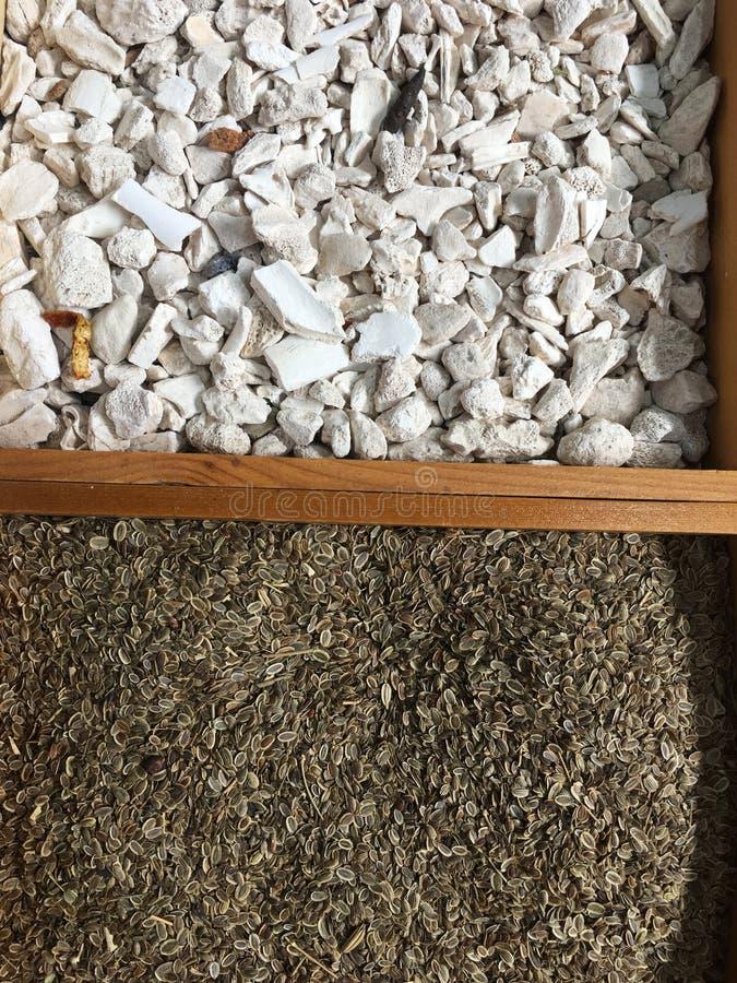 Material de la hierba medicinal china imagenes de archivo