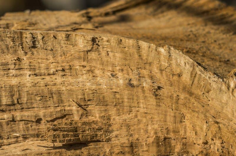 Material de madeira imagem de stock royalty free