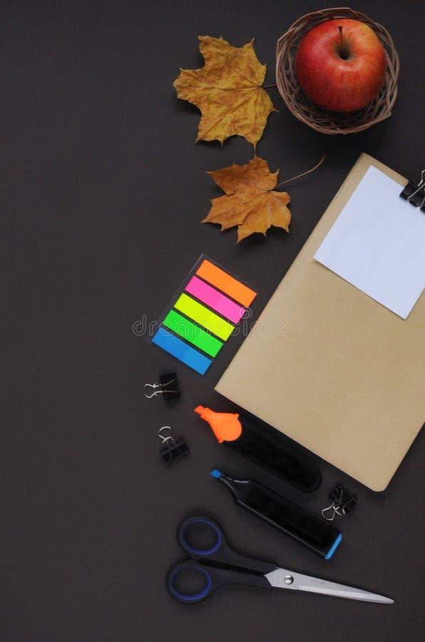 Material do estudo Fundo da educação stationery Aspectos da educação Etiquetas, papel, marcadores, tesouras, uma maçã, folhas e n fotos de stock royalty free