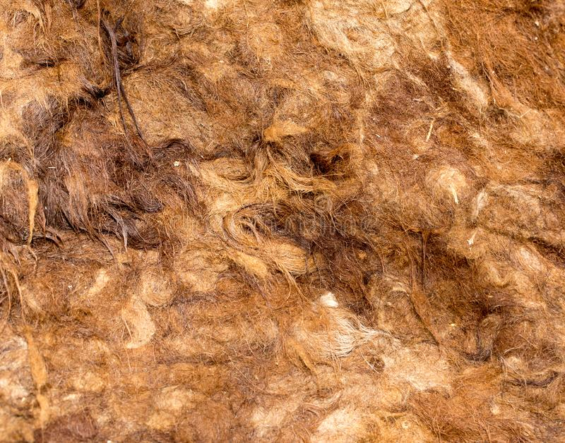 Material made of camel wool royalty free stock images