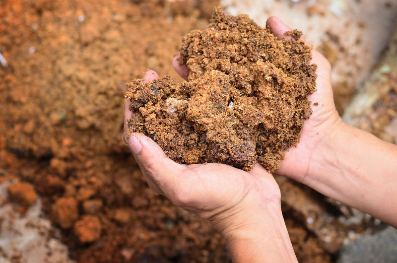 Material for mineral. On farmer hand stock photography