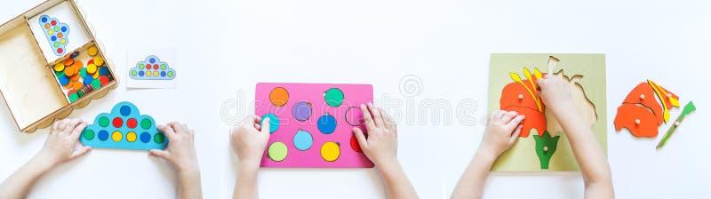 Materiale di Montessori Mani del `s dei bambini Lo studio su matematica e su biologia benner fotografie stock libere da diritti