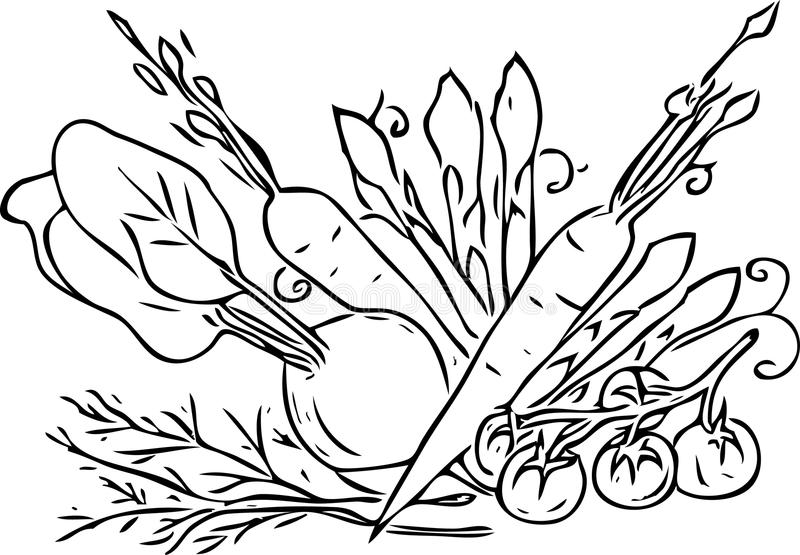 Materiale illustrativo in bianco e nero delle verdure e delle verdure immagini stock libere da diritti