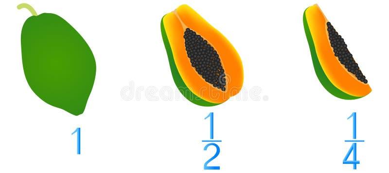 Mathematische Spiele für Kinder Studieren Sie die Bruchzahlen, Beispiel mit einer Papaya lizenzfreie abbildung
